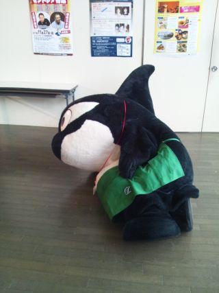 お疲れDSC_0068.jpg