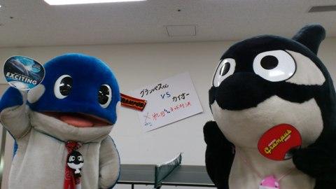 水族館4.JPG
