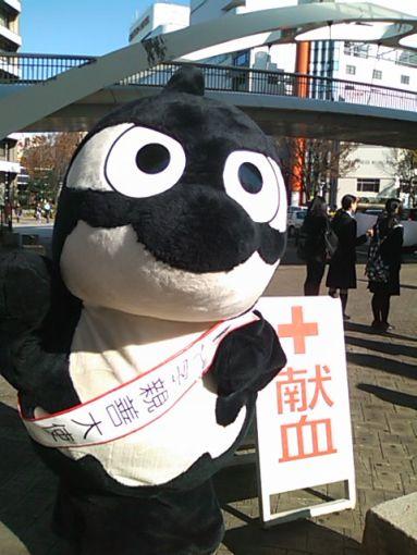 赤十字3.JPG